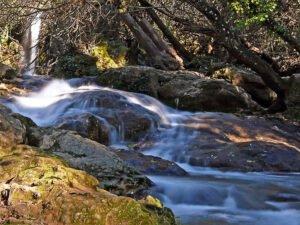 Descubre los parques naturales de Sevilla