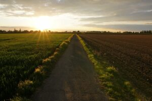 rutas-senderismo-sevilla